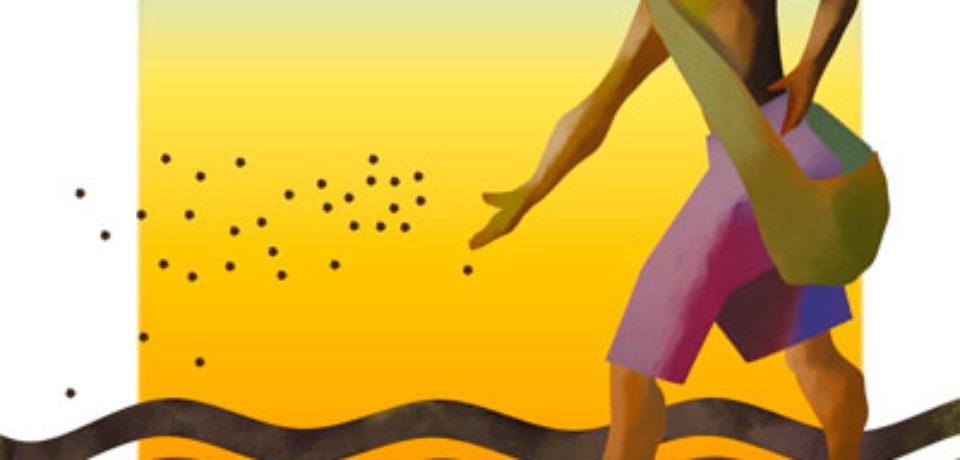 El domingo de la semilla y el grano de mostaza 11 TO ciclo B
