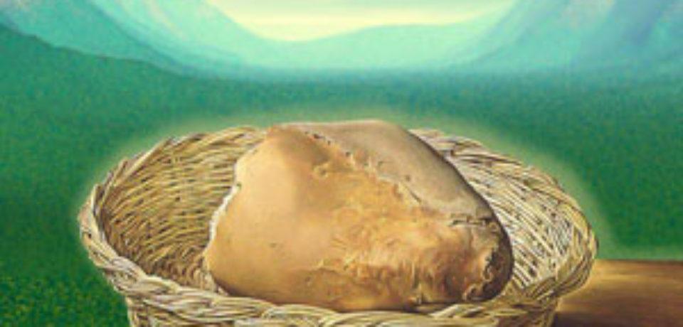 El domingo del pan de vida 18 TO ciclo B
